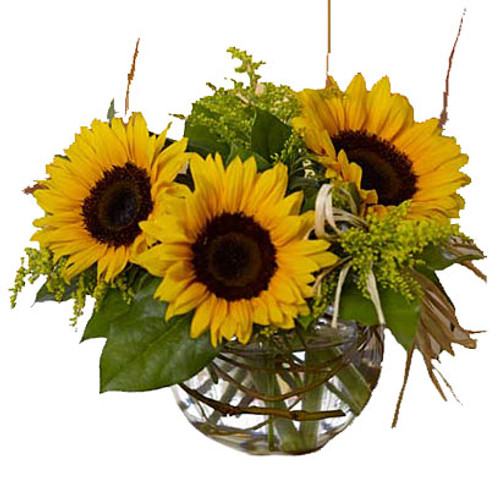 Sassy Sunflowers  Item No: TF-F11
