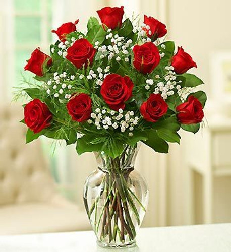 Chicago Dozen Red Long Stem  Roses