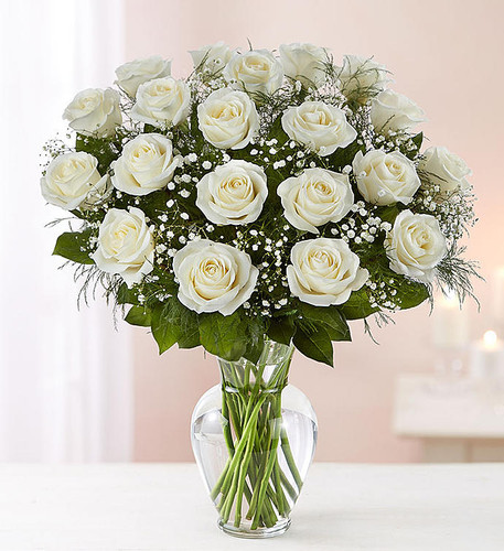 Chicago's 2 Dozen White Rose Bouquet