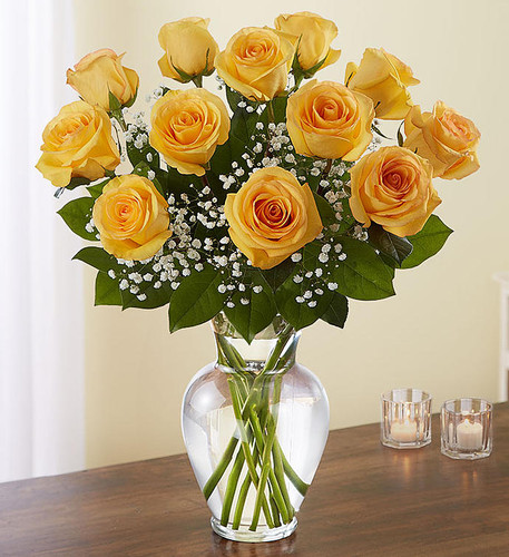 Rose Elegance™  Dozen Premium Long Stem Yellow Roses