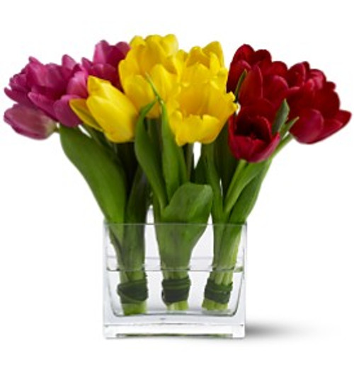 Chicago Flowers Tulip Trio Bouquet Local Delivery Only