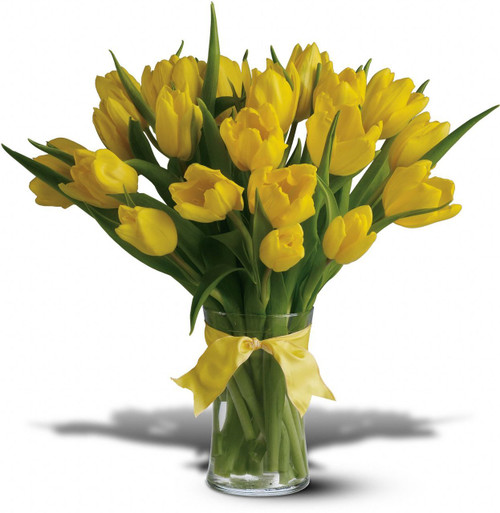Chicago  Flowers Sunny Yellow Tulips Local Chicago Delivery only
