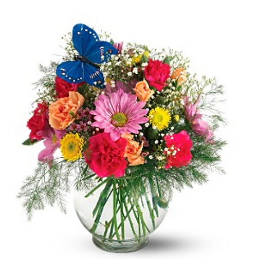 Chicago Florist Butterfly & Blossoms Vase