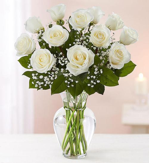 Chicago's Dozen White Roses
