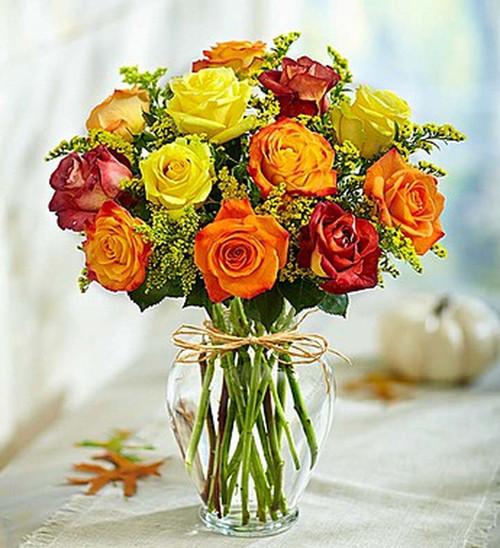 Premium Long Stem Autumn Roses