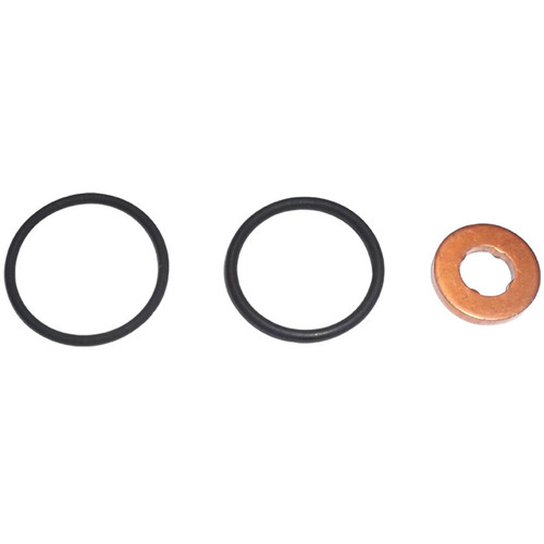 ISK119 BT-Power Injector Seal Kit