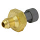 BTS021308 BT Power EBP Sensor