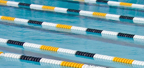 """Competitor Swim Gold Medal 6"""" in. Racing Lane Line, 60'"""