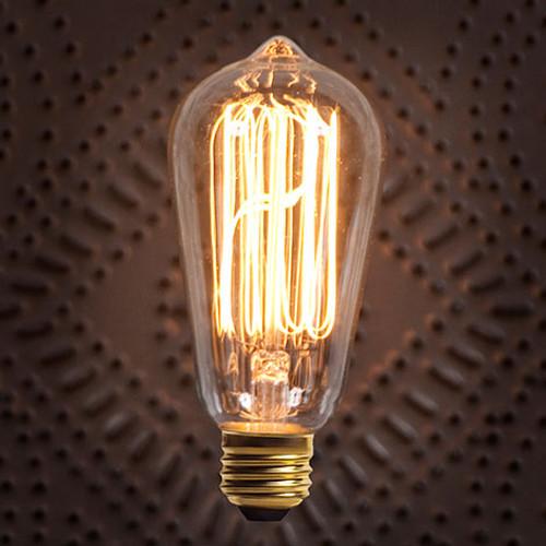 Large Edison Bulb
