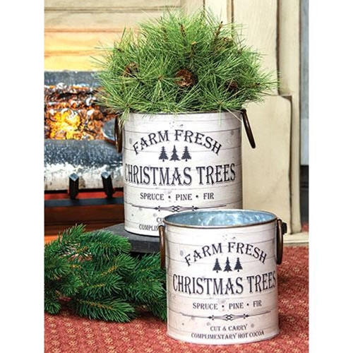 Farm Fresh Christmas Trees Buckets
