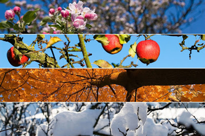 God's Love Through the Seasons