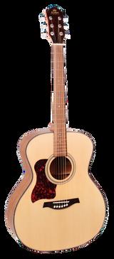 Guitar - Gilman - 50 series. Grand Auditorium. Left hand