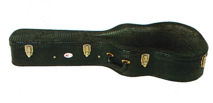 Acoustic Guitar Case   Xtreme