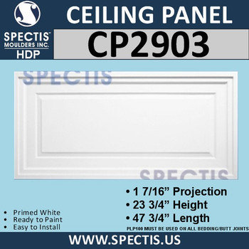 """CP2903 Rectangle Ceiling Panel 23 3/4 x 47 3/4"""""""
