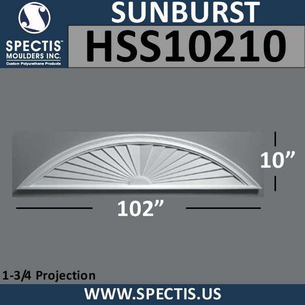 HSS10210
