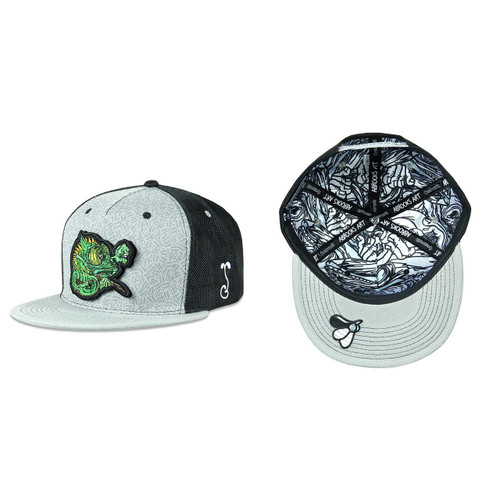 Buy a Black Aaron Brooks Removable Chameleon Snapback Hat Online from Tree Huggers Co-op