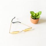-Gold Frames -Yellow Lenses -Oval -Sunglasses -Medium Lens