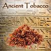Ancient Tobacco (HA)