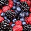Berry (LQ)