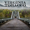 Virginia Tobacco (FLV)