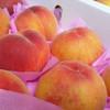 Juicy Peach (HA)