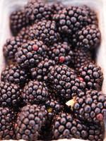 Blackberry (CAP)