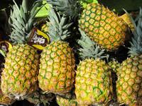 Pineapple (FA)