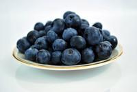 Bilberry (FA)