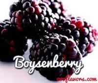 Boysenberry  (OOO)