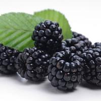 Blackberry (TDA)