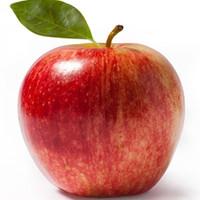 Apple (TDA)