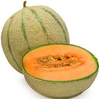 Cantaloupe (TDA)