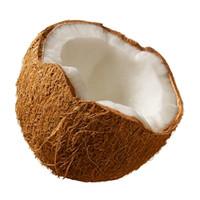 Coconut (TDA)