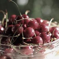Black Cherry (FF)