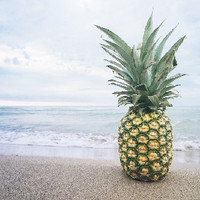 Funky Pineapple (MB)
