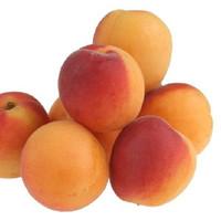 Apricot (BD)