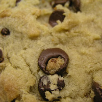 Chocolate Chip Cookie (TP)