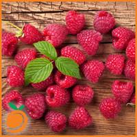 Raspberry (RF)