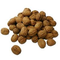 Bitter Nut Extra (TDA)