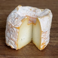 Brie Cheese (FLV)