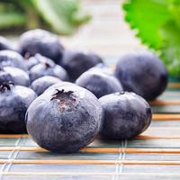Blueberry (NV)