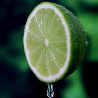 Lime (NV)