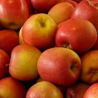 Apple (SC)