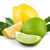 Lemon Lime II (TDA)