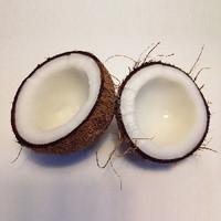 Creamy Coconut (EF)