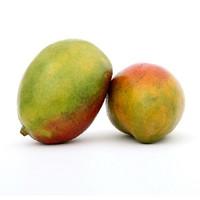 Malaysia Mango (HC)
