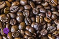 Brazilian Coffee (WFSC)