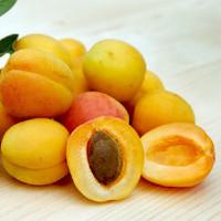 Apricot (DL)