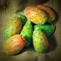 Prickly Pear (IW)