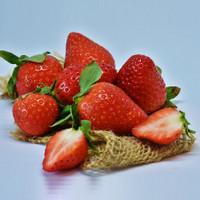 Strawberry Harvest (JF)